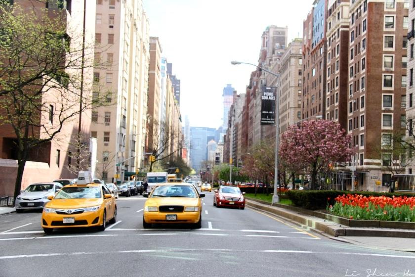new-york-streets2